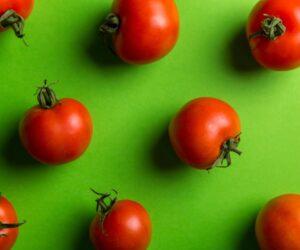 Técnica Pomodoro: aplique e tenha produtividade!